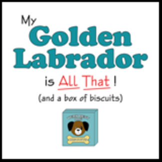 My Golden Labrador is All That!