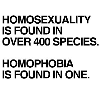 HOMOSEXUALITY IS FOUND IN 400 SPECIES