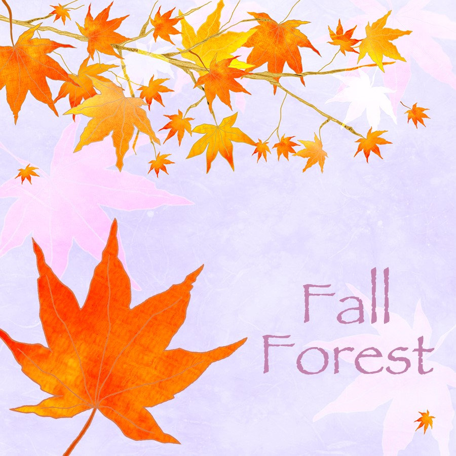 ♥ Fall Forest