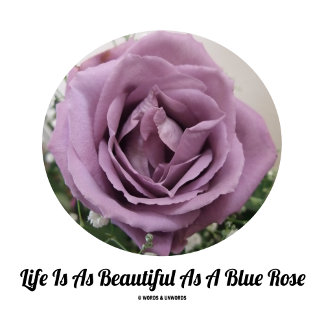 Life Is As Beautiful As A Blue Rose (Flower)