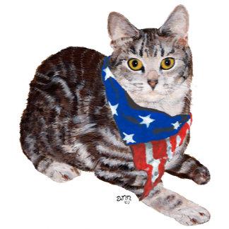 Patriotic Tabby Cat
