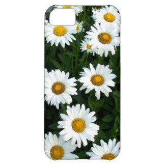 IPhone/ iPad/IPod Cases/Kindle Cases