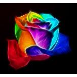 Beautiful Rose of Colors 5.png