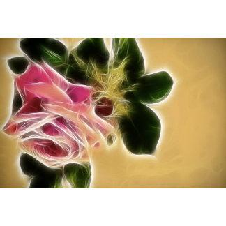 Rose Photo Fractal