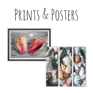 Prints and Posters