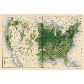 132 Improved land 1900