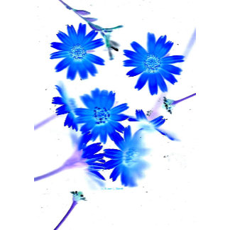 Blue colorized wildflowers scattered