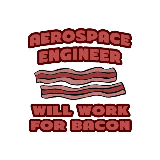 Aerospace Engineer .. Will Work For Bacon