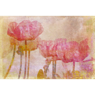 Pretty Pink Poppies Watercolor