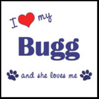 I Love My Bugg (Female Dog)
