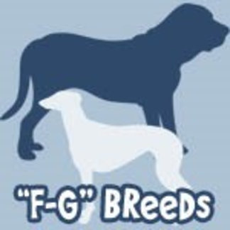 Dog Breeds F to G