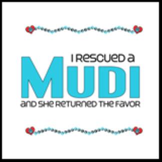 I Rescued a Mudi (Female Dog)