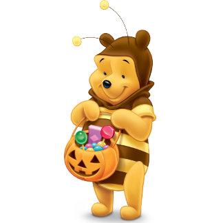 Pooh in Honey  Bee Costume