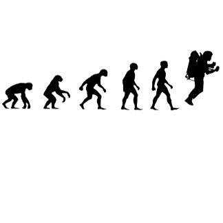 EVOLUTION T SHIRTS