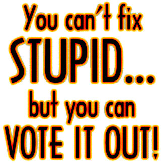 Vote Out Stupid - Fire