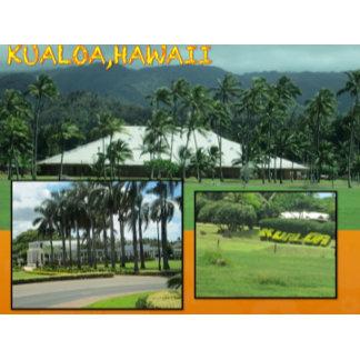 HAWAII COLLAGE #26