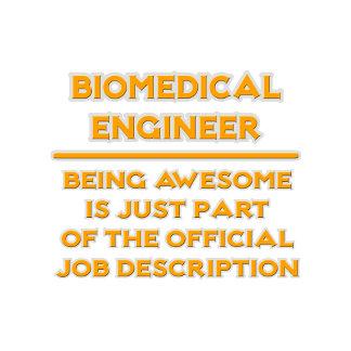Awesome Biomedical Engineer ..  Job Description