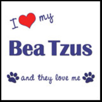 I Love My Bea Tzus (Multiple Dogs)