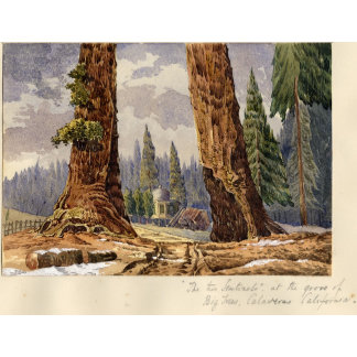 The Two Sentinels, at the Grove of Big Trees