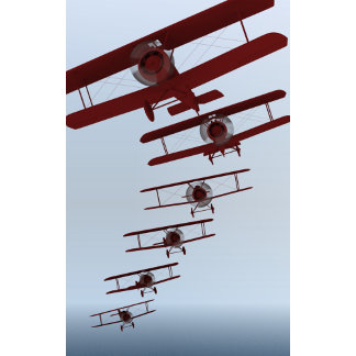 Vintage Biplane Aviation