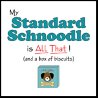 My Standard Schnoodle is All That!