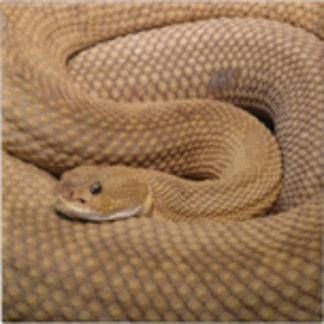 Basilisk Rattlesnake