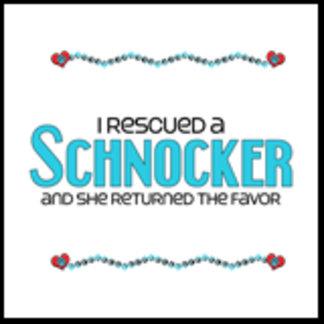 I Rescued a Schnocker (Female Dog)