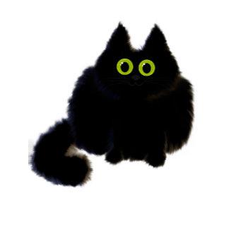 Fuzzy Black Kitten