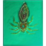 Spiderweb5.jpg