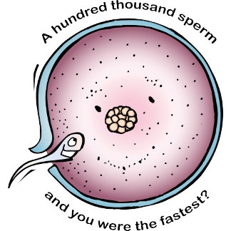 A Hundred Thousand Sperm And You Were The Fastest?