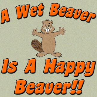 A Wet Beaver Is A Happy Beaver
