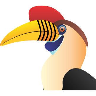 Red Knobbed Hornbill 2