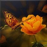 Fairy Tale Butterfly