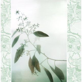 """""""Eucalyptus w/ pattern poster print"""""""