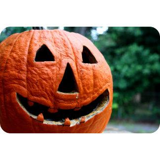 Rotting Pumpkin Jack O Lantern Photograph