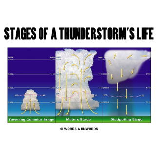 Stages Of A Thunderstorm's Life (Meteorology)