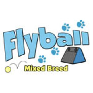 Flyball Mixed Breed