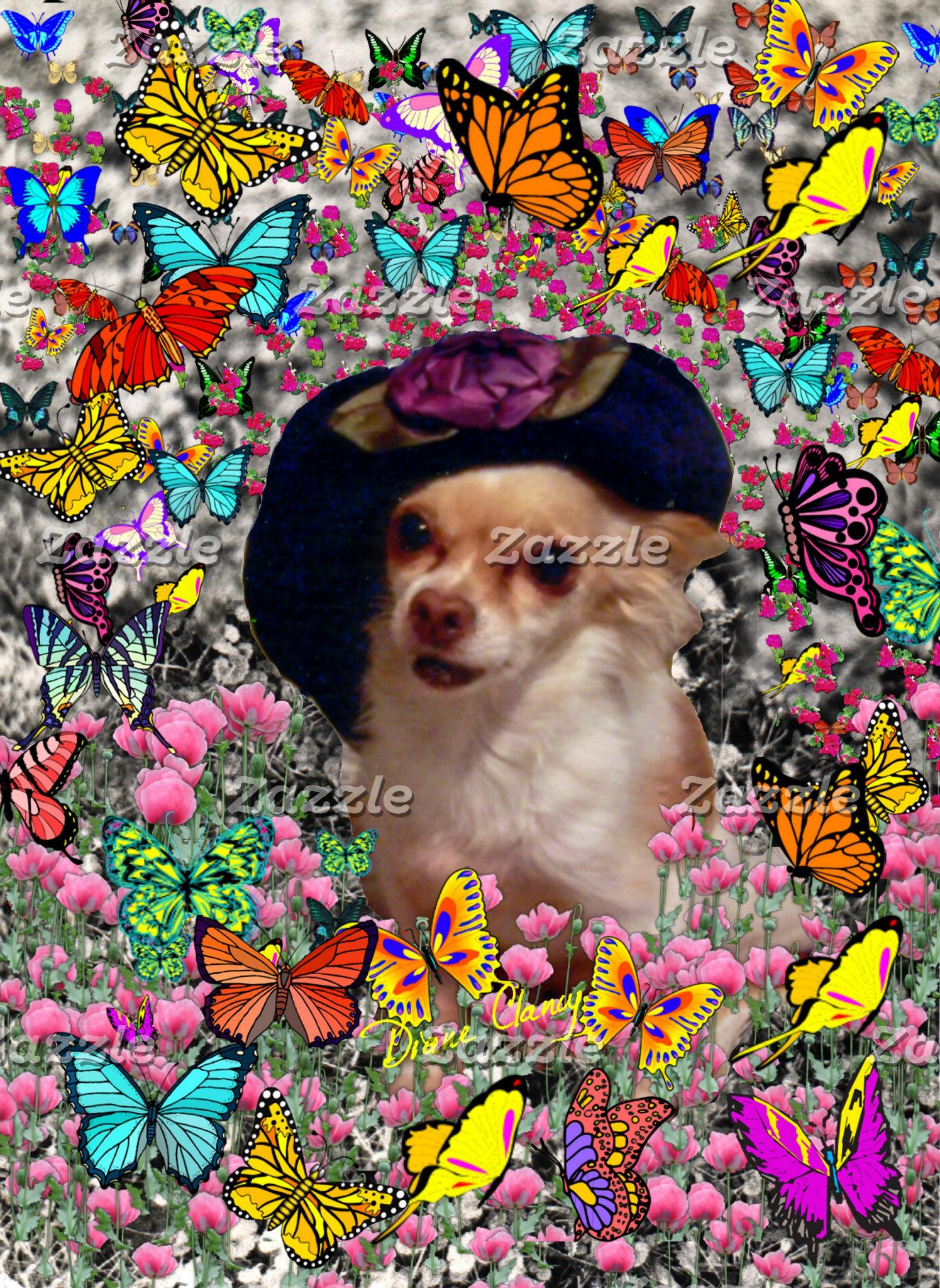Chi Chi in Butterflies  - Chihuahua