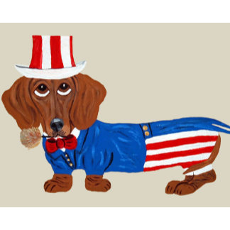 Dachshund In Uncle Sam Suit