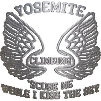 Chrome Wings