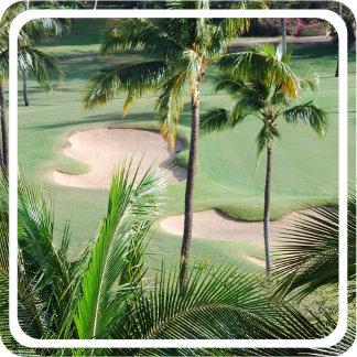 Golf Course in Tropics