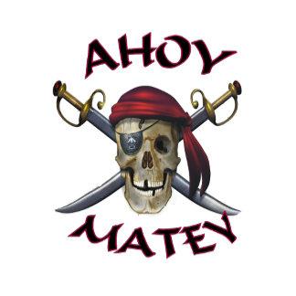 Pirate Skull Ahoy 91 items