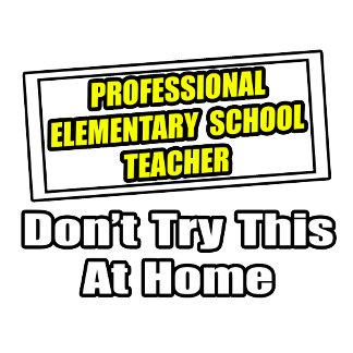 Professional Elementary School Teacher...Joke