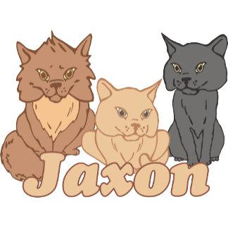 Personalized Jaxon Cat Lover