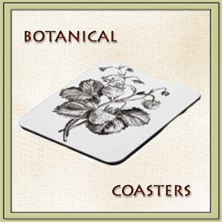 Botanical coasters