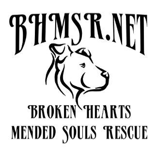 BHMSR Logowear!