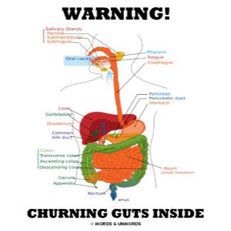 Warning! Churning Guts Inside (Digestive System)