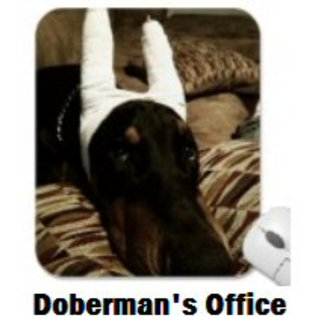 Doberman's Office