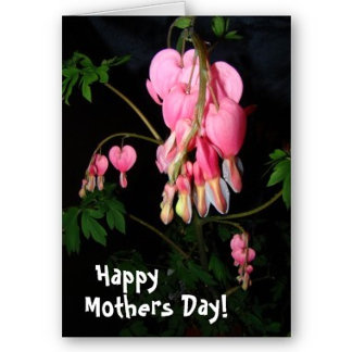 Mothers Day Cards, Gifts