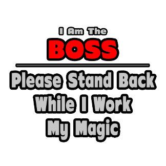 Boss ... Stand Back ... Work My Magic